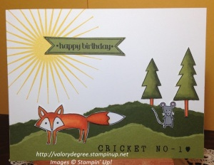 Cricket Age 1