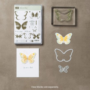 Watercolor Wings and Framelits