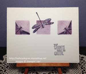 Dragonflyx3