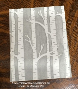 Brayered Birches