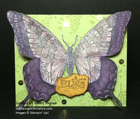 Bliss Butterfly