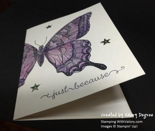 Swallowtail 3