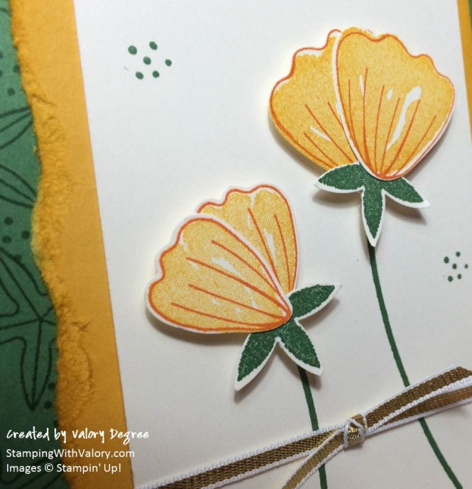 California Poppies Detail